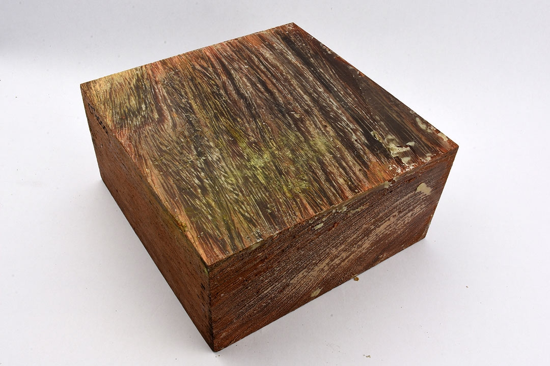 "Camel Thorn Bowl Blanks 6"" x 6"" x 3"""